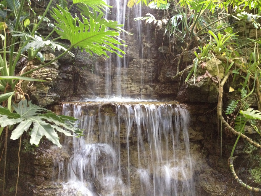 Waterfall in the rain forest of Puerto Rico